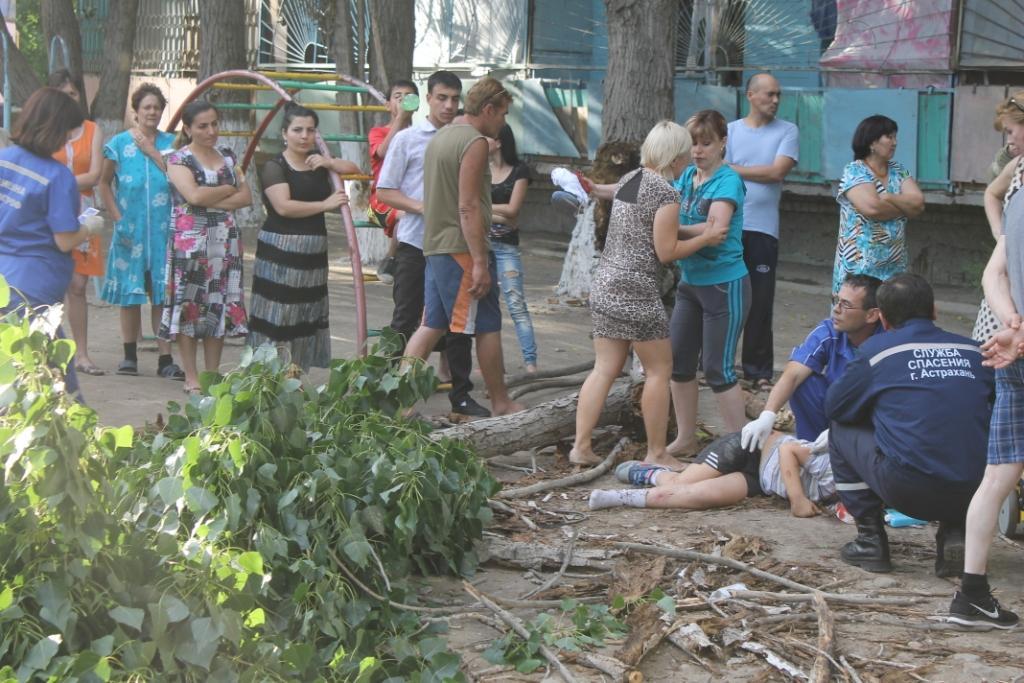 images novosti2 Proisshestviya 41 В Астрахани на мальчика рухнуло дерево