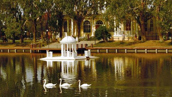 images novosti2 Turizm lebedinka В Лебедином озере Каспийской столицы России появятся утки
