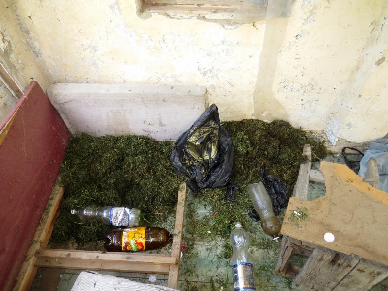 25 kg marihuany   -800x600