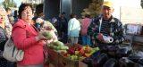 Завтра в Астрахани пройдёт очередная сельскохозяйственная ярмарка