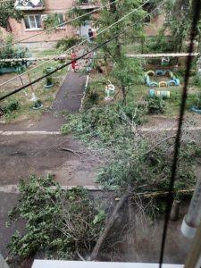 1а 14 В Астрахани из-за непогоды упало дерево на проезжую часть