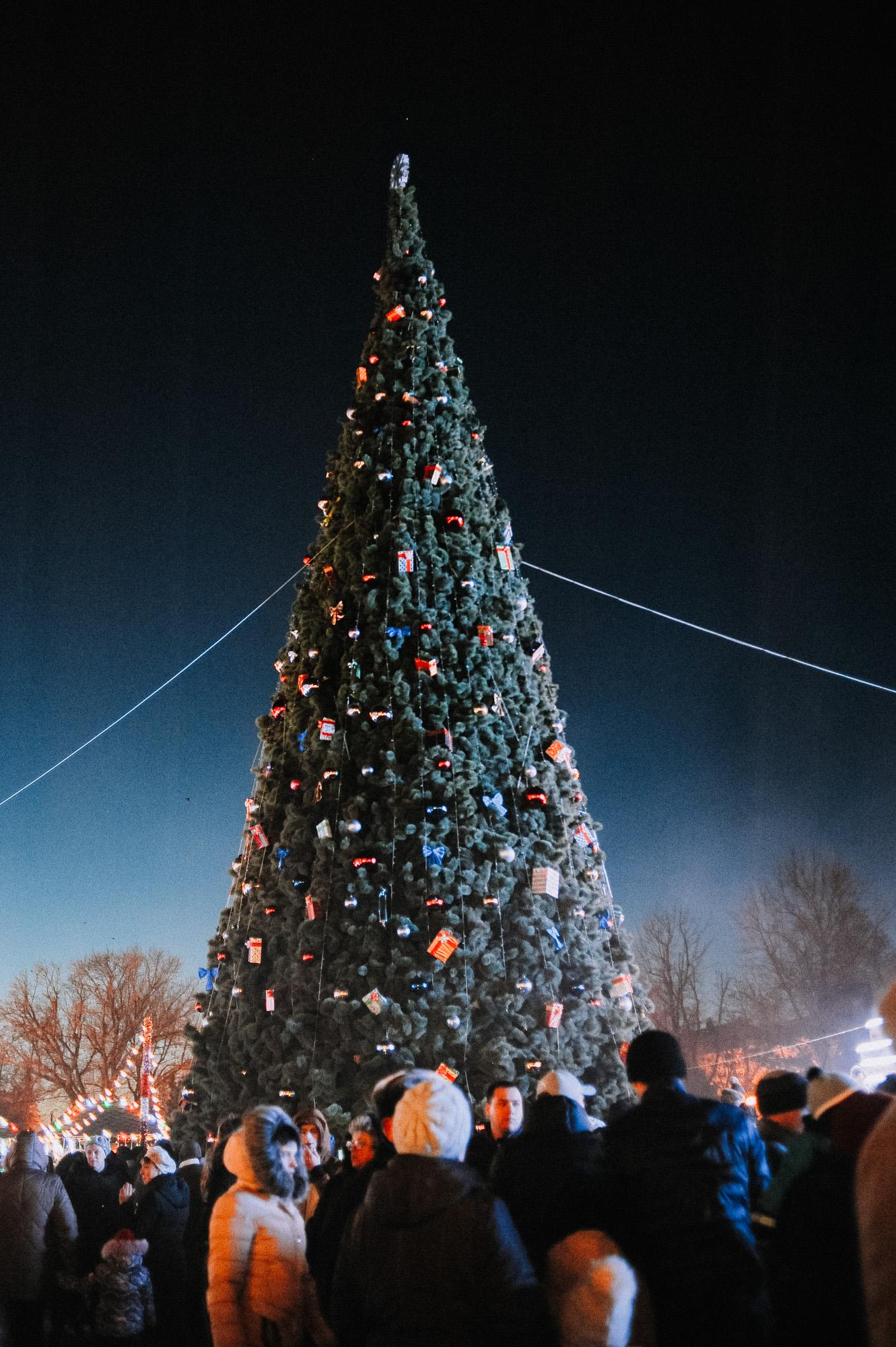 ZZZ 6800 В Астрахани на площади Ленина зажгли новогоднюю елку: кадры торжества
