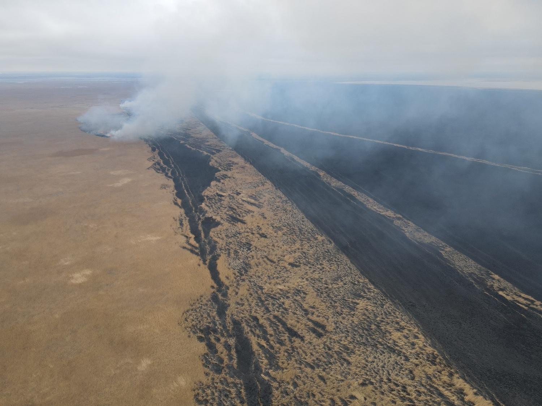 тростник 4 Природные пожары в астраханском биосферном заповеднике удалось ликвидировать лишь через 10 дней