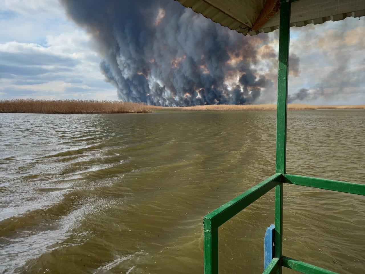 тростник 5 Природные пожары в астраханском биосферном заповеднике удалось ликвидировать лишь через 10 дней
