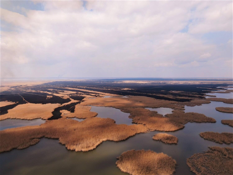 тростник 6 Природные пожары в астраханском биосферном заповеднике удалось ликвидировать лишь через 10 дней