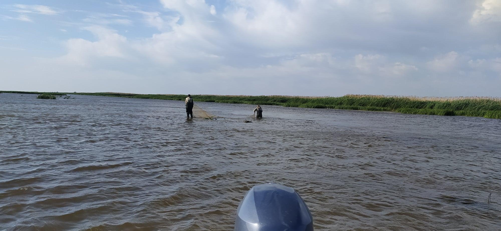 1 Под Астраханью в Волге выловили странную рыбку