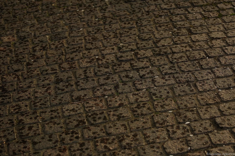 5W4A0088 8 Астраханское небо после дождя заворожило горожан (фоторепортаж)