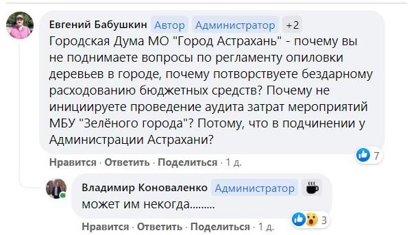 """3 В Астрахани с подачи магазина срубили """"сорящий"""" семенами вяз"""