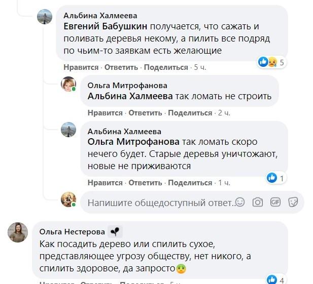 """5 В Астрахани с подачи магазина срубили """"сорящий"""" семенами вяз"""