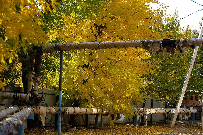 осень в Астрахани