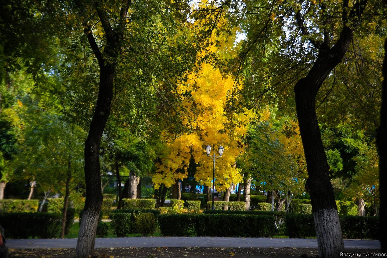 осень в Астрахани, Погода в Астрахани